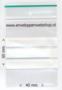 gripzakje met schrijfvlak 4 x 6 cm